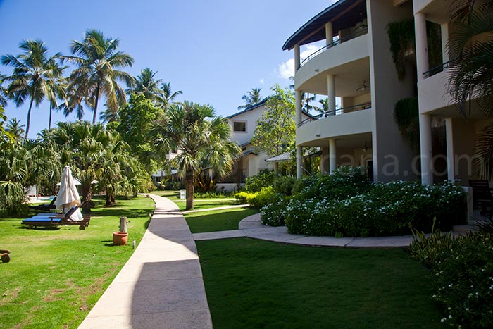 alisei 34 sale appartement las terrenas 04